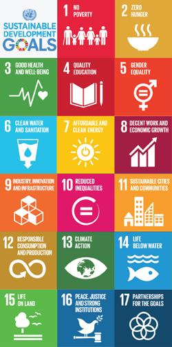 UN.SDGs.Vertical.png